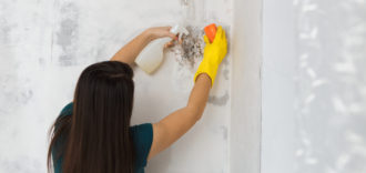 When Does Homeowners Insurance Cover Mold Damage and Removal?